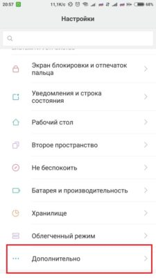 Режим разработчика