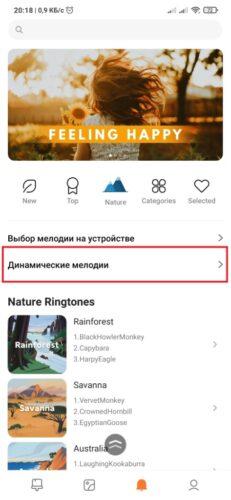 При выборе мелодии открывается приложение Темы